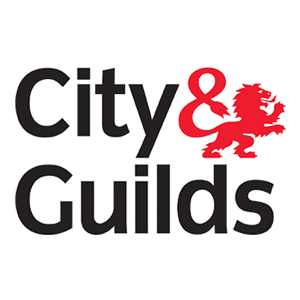 Logo city and guilds 80fe4ceba38606cf3a543126e3124b151cc10ee18be8798b7b9f80d6bfe8285c